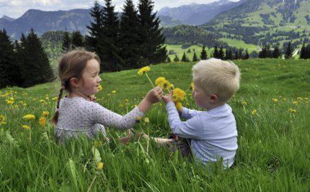 Blumenwiese beim Bergheim Unterjoch